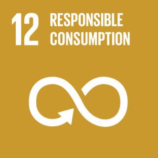 Goal 12 - Responsible Consumption