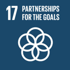 Goal 17 - Partnerships for the Goals