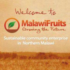 Malawi Fruits
