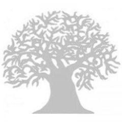 Scottish Malawi Foundation